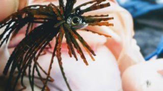 【バス釣り】初めてのスモラバ作り、阿武隈川3日目?結果は▪▪▪