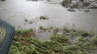【ダイワ】阿武隈川増水中!アルファスCT-SVで久しぶりにスモールゲット